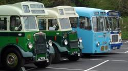 Ulsterbuses