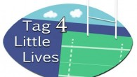 On Saturday 22nd August, Malone Rugby Club will play host to Tag 4 Little Lives, a tag rugby festival set up with the aim of raising funds for the Neo Natal Unit at The Ulster Hospital .... [read more]